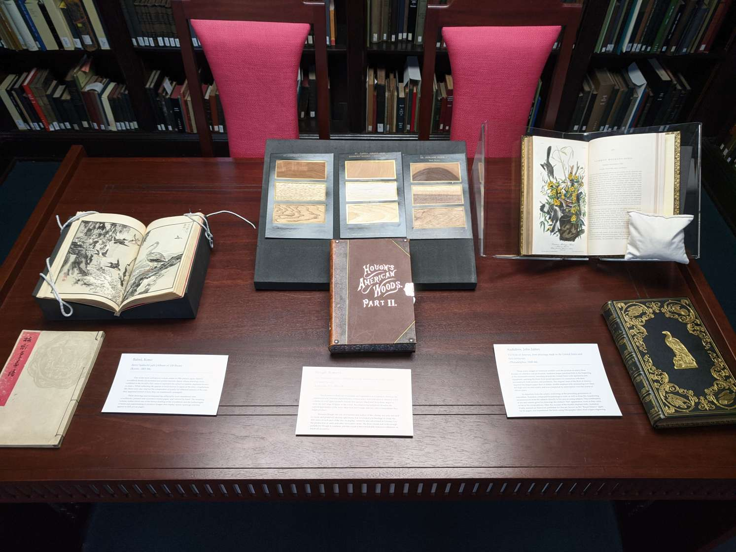 A table full of books set out for a class visit