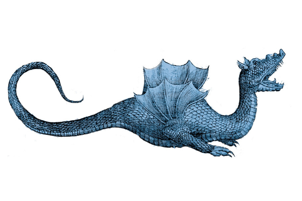 Draco Colored Blue
